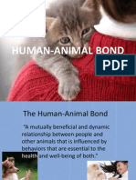 Human Animal Bond ppt