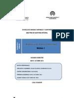 Deber Modulo auditoria de control interno