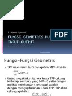 Fungsi Geometris Dan Hubungan Input-Input