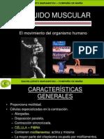 tejidomuscularmcm-091012060710-phpapp01