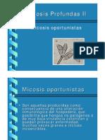 micosis profunda