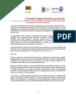 Propuestas PPII Andinos RIO+20