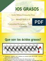 Presentación1 ACIDOS GRASOS