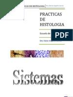 Guia de Histologia Karen Angeles Corregido