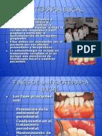Fisioterapia Clase 8