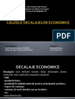 Cauzele decalajelor economice