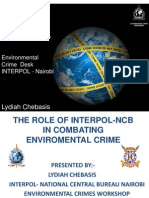 Interpol Presentation
