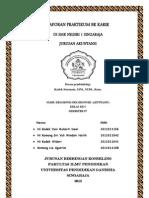 Laporan Praktikum Bk Karir 4bkc Smk n 1 Singaraja (Yuni, Sri,Widari,Lia)