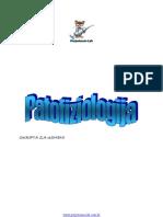 Patofiza-Skripta (Mef St)