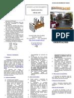 Normas e orientações_convertido