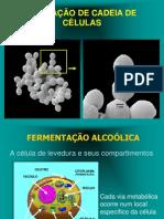 destilação peneira (2)