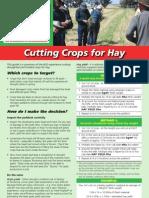 Coloured Cutting Hay Factsheet2008