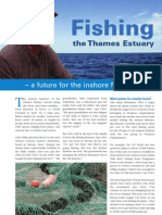 Fishing the Thames Estuary, summer 2008