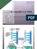 Αντιγραφή-DNA