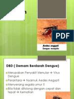 Penyuluhan Dengue
