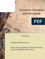 Sensation&Perception