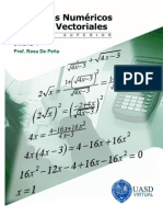 Unidad 1 Algebra Superior.conj Num yEsp. Vect. RosaDePena