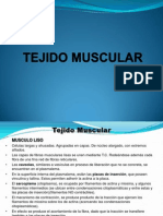 histologia general-tejido muscular