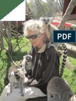 Beata Lemur