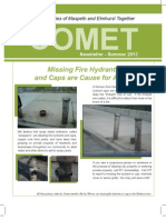 Comet Newsletter Summer 2012