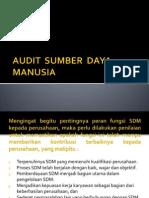 Sistem Audit Sumber Daya Manusia
