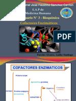 Cofactores Enzimaticos