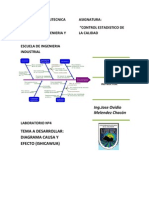 Diagramas Causa y Efecto