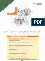 Sintomatologia e Fisiopatologia da Doença de Fabry