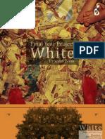 White Processbook0608