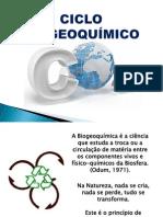 CICLO BIOGEOQUÍMICO - apresentação
