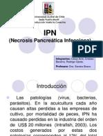 IPN Estrategia Sanitaria