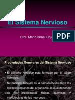 1.-Introduccionsistemanervioso Version 2