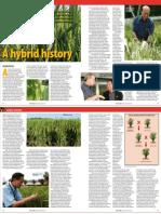 RT Vol. 6, No. 4 A hybrid history