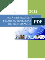 Agua Virtual Iinforme