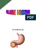 Curs Digestiv.2012.Studenti