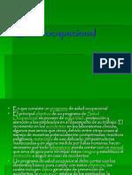 cfakepathsaludocupacional-090901235658-phpapp01