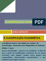 Classificação_filogenética