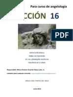 LECCION 16  Para curso de angelología  EXPLICACIÓN BÁSICA SOBRE LAS FUNCIONES DE LAS TRES JERARQUIAS ANGELICAS DESCRITAS EN 9 COROS