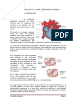 Trabajo Manual de Patologias