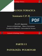 semtorax2