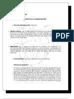 Primer Informe Economia Economia gropecuaria trabajo universidad nacional sede medellin