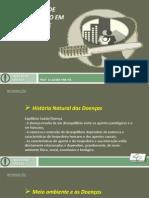 História natural das doenças - Níveis de prevenção