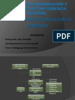 Dº ADMINISTRATIVO II - Diapositivas