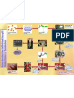 Poster Biotek Terbaru