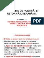 C04_teoria literaturii_2011