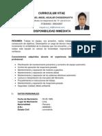 Curriculum Vitae Miuel