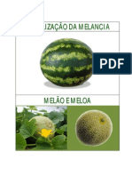 Fertilização da melancia, melão e meloa