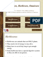 Carnivore Herbivore Omnivore