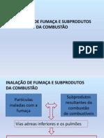 INALAÇÃO DE FUMAÇA E SUBPRODUTOS