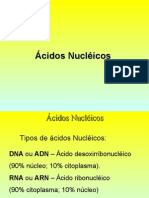 Aula de Ácidos Nucléicos